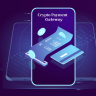 Crypto Payment Gateway Development - A Secured Payment Solution in a Decentralized Network