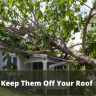 """A true """"storm chaser"""" and one you want to keep off your roof is a roofing scammer..."""