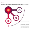 5 Steps Involved In Reputation Management Strategy