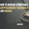 Start your profitable cryptocurrency exchange business like binance