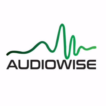 Get AudioWise !