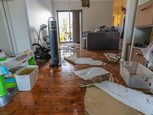 SuRey Water Damage is a renowned mold removal company in Avocado Heights CA specialized in delivering affordable mold remediation services. Call us now 833-597-8739.