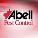 Pest Control In Waterloo Region