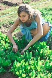 Chiropractor. Gardening. Health. Back.
