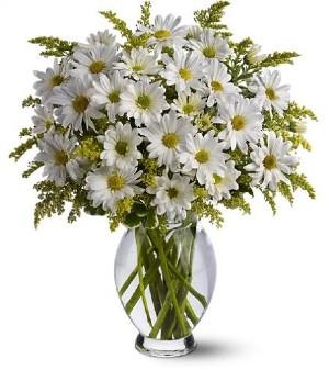 Brant Florist Burlington