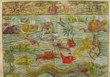 MUNSTER'S SEA MONSTERS MEERWUNDER UND SELZAME