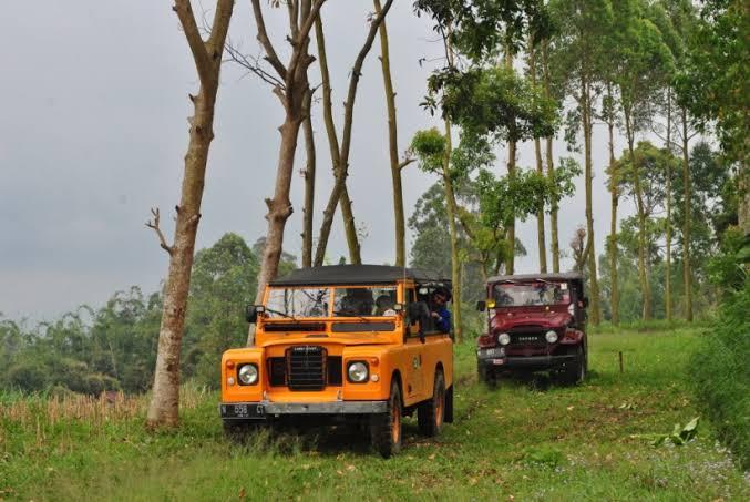 off road budug asu