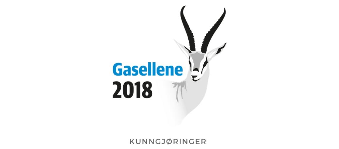 NICHE kåret til Gasellebedrift for 2018