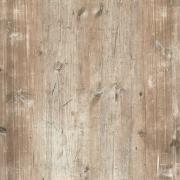 Findus grå, 110x70