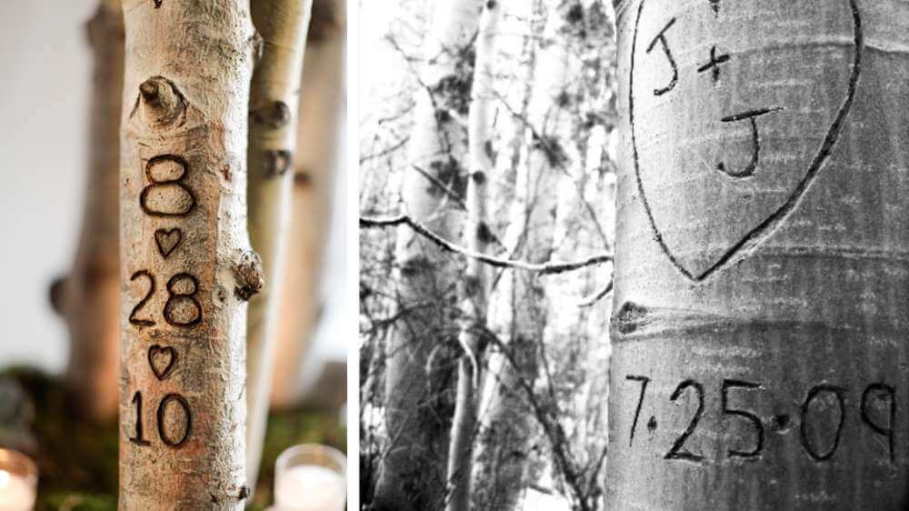 Graver la date de rencontre sur le troncs d'un d'arbre