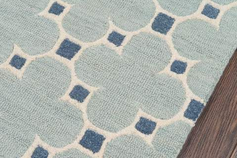 Blue Indian Transitional Modern Rug 1