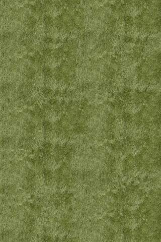 Apple Green Chinese Transitional Shag Rug