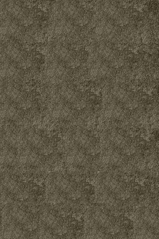 Grey Chinese Transitional Shag Rug