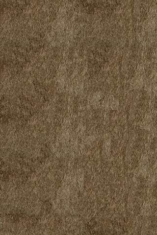 Light Taupe Chinese Transitional Shag Rug