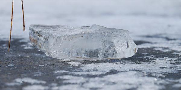 De-icers prevent winterkill