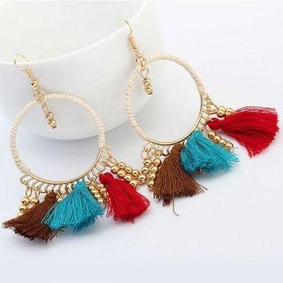 Multi Colour Tassel Earrings