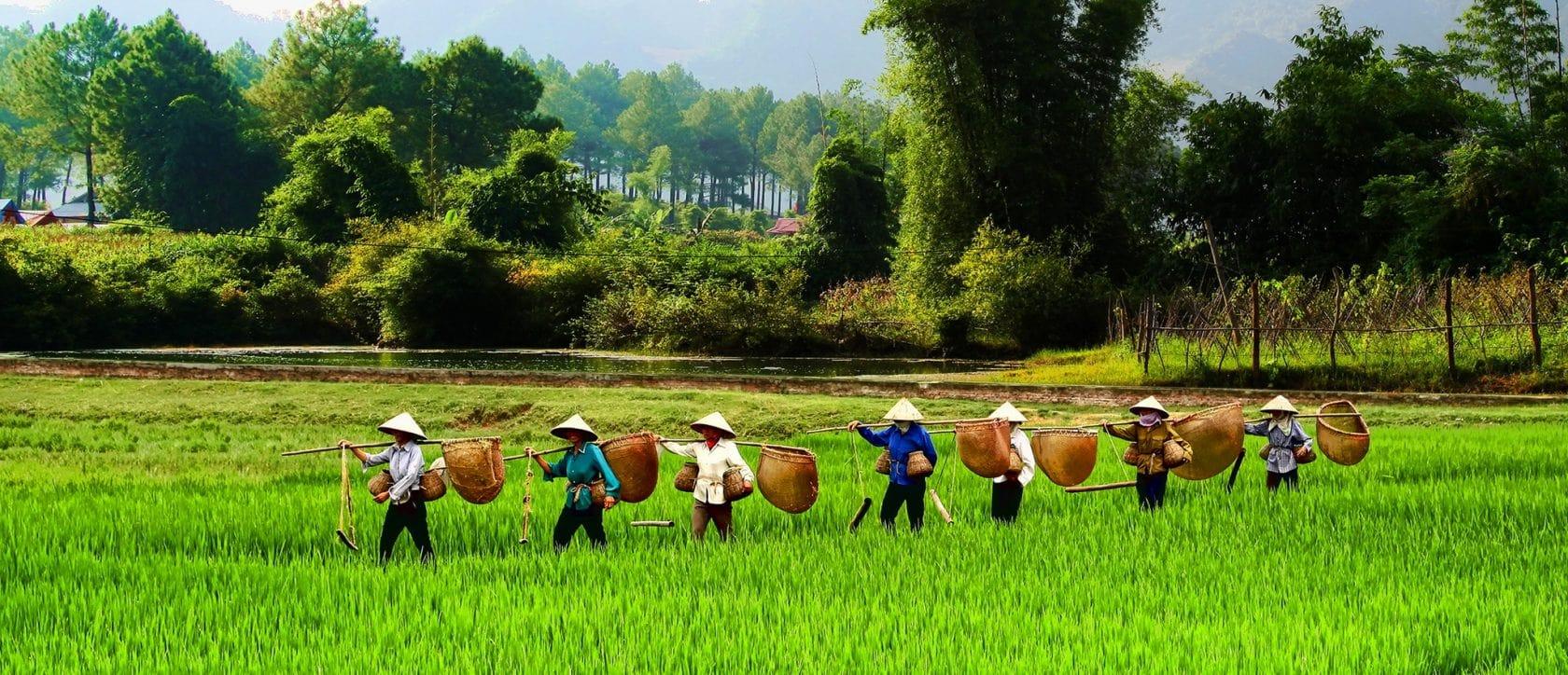 sapa vietnam travel from Italy