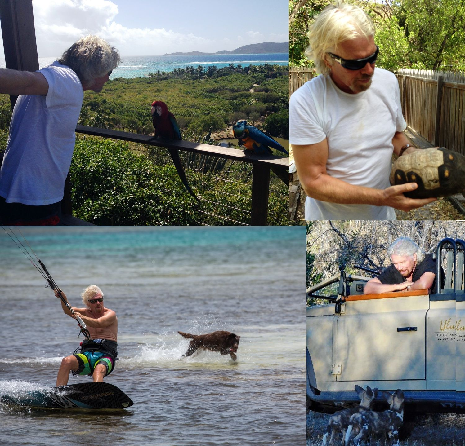 Richard Branson animal collage