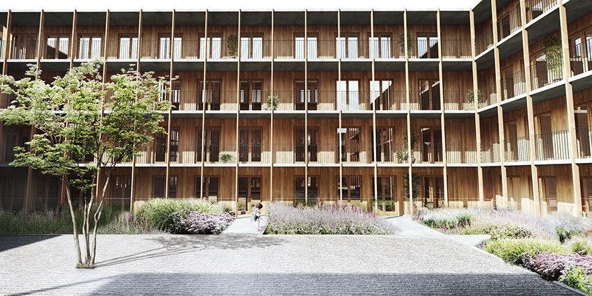 desarrollo sostenible con madera