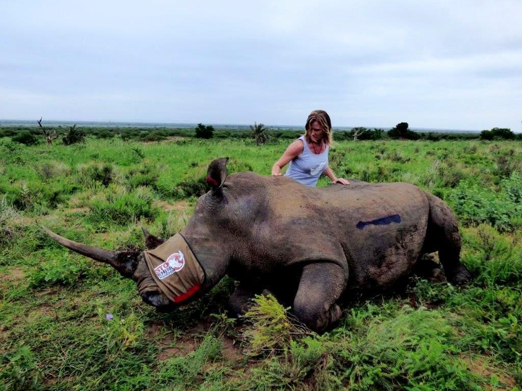 Virgin Unite, Animal Conservation, Rhinos, Jamie Joseph