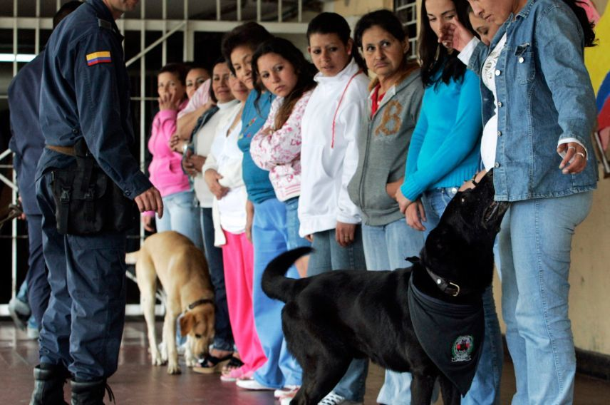 Virgin Unite, war on drugs, builes colombia buen pastor prison dogs