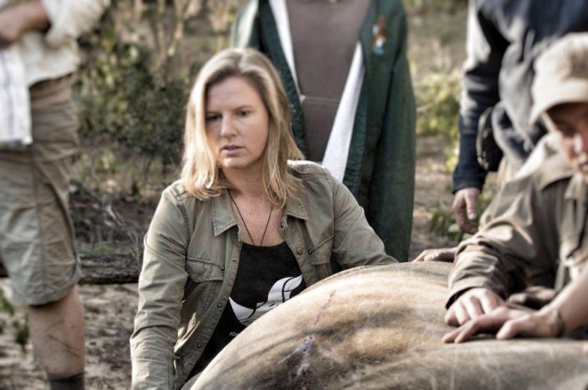 Virgin Unite, Rhino, Animal Conservation, Saving the Wild, Jamie Joseph, Dehorning