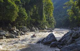 Virgin Unite, wildlife conservation, samana river
