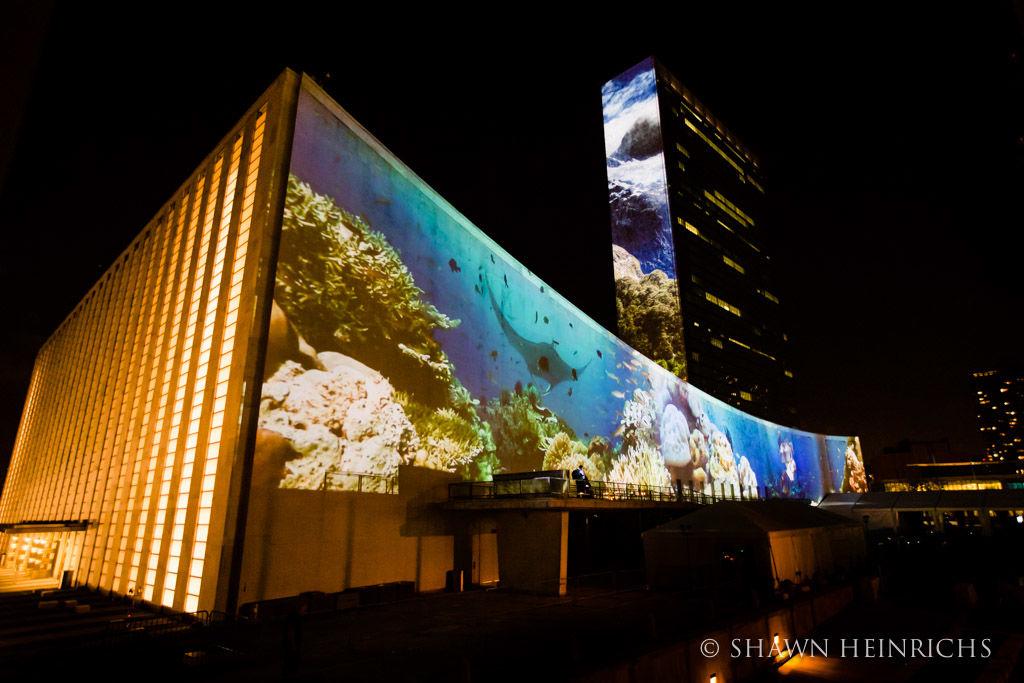 UN, Ocean Conservation, Ocean Unite