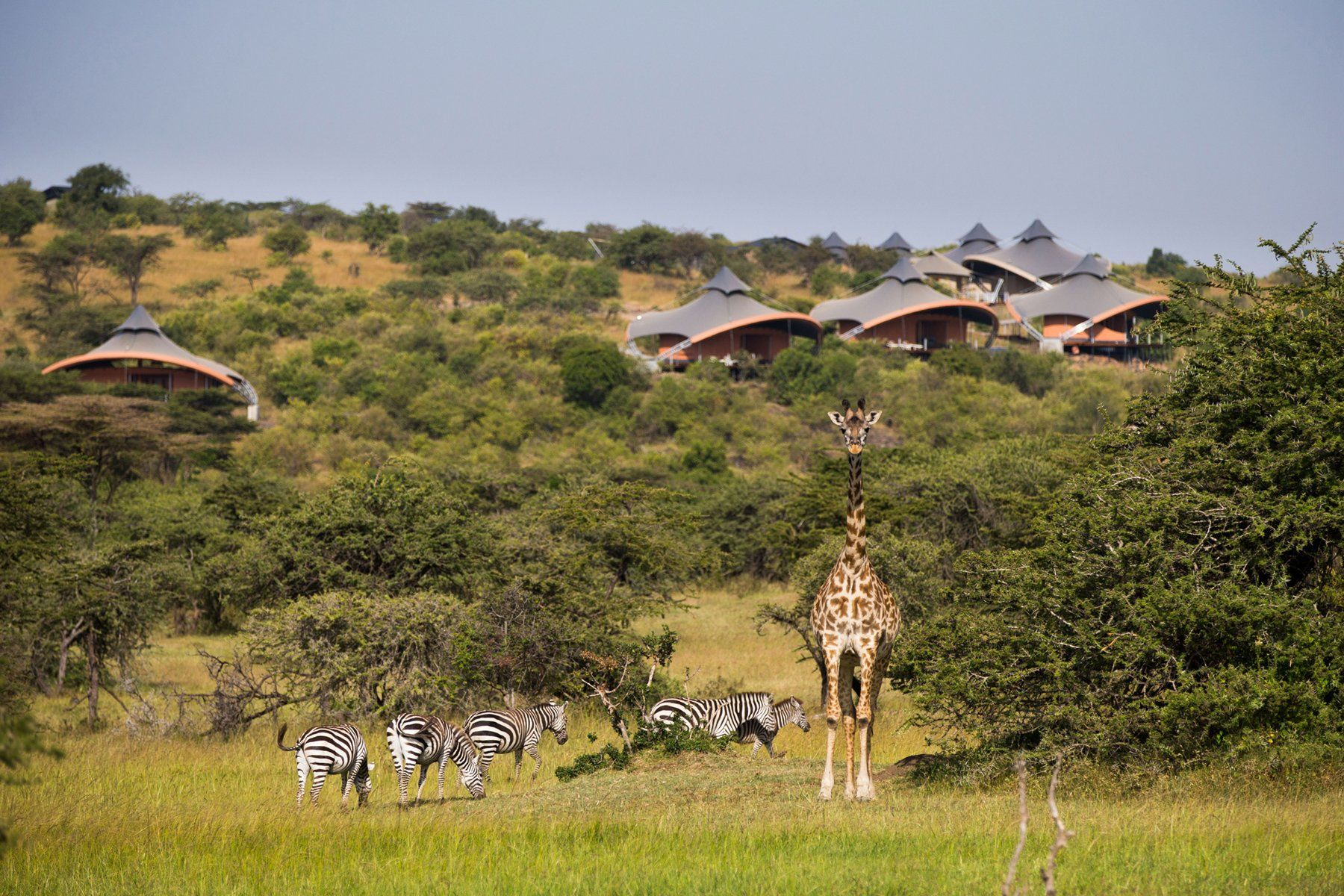 Virgin Limited Edition Mahali Mzuri, Kenya