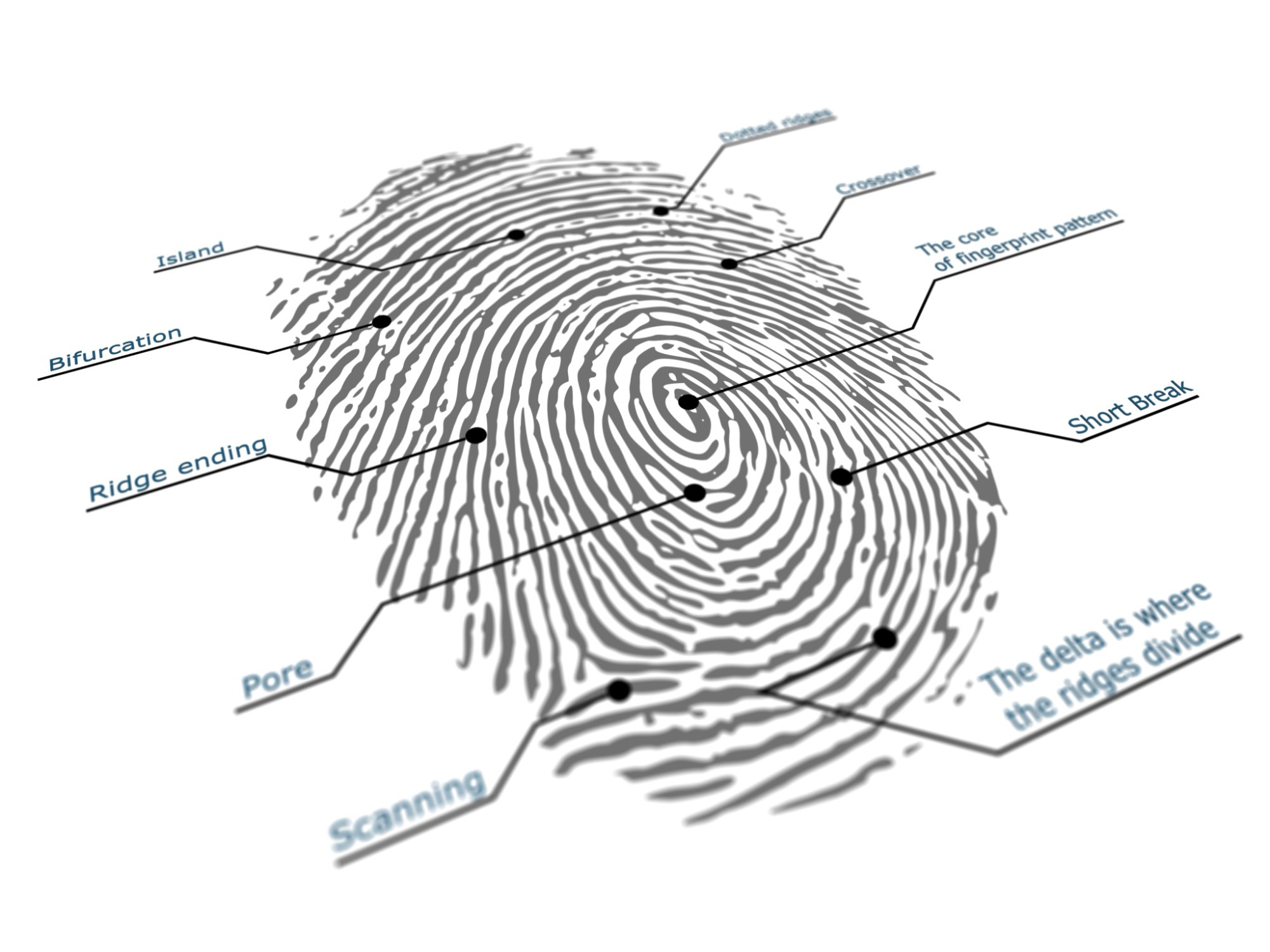 Is Your Fingerprint Your New Pin Code?