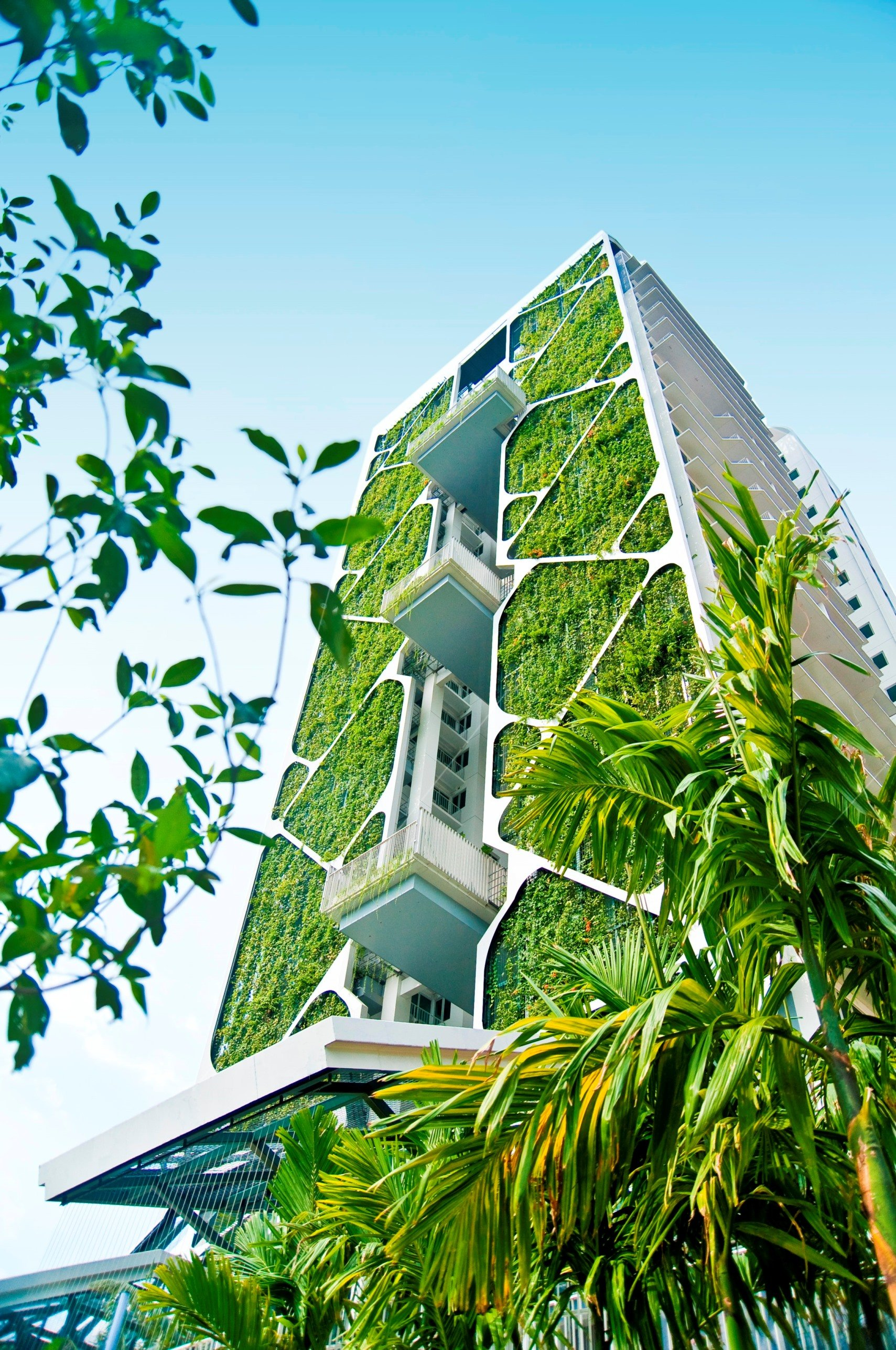 Futuristic Nature House Design: Green Streets: How Plantlife Is Inspiring Modern