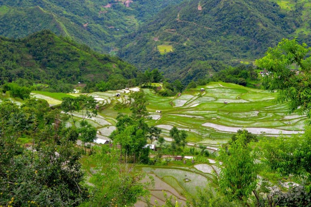 Pfutseromi Village Nagaland