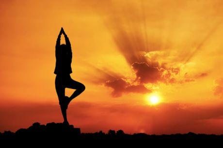 centre de yoga sivananda vedanta logo