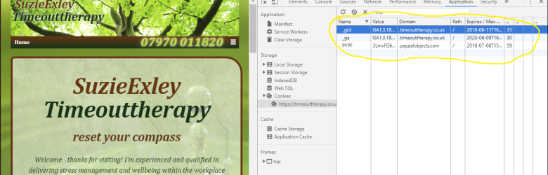 Screenshot of Chrome Dev Tools inspecting Application / Cookies for Timeouttherapy.co.uk in incognito mode - still showing google analytics cookies from previous session