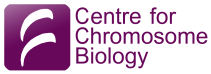 Centre For Chromosome Biology