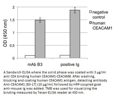 Image thumbnail for Anti-CEACAM1 [B3-17]