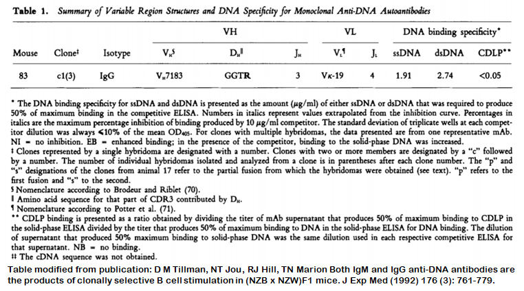 Image thumbnail for Anti-DNA [m83-c1] monoclonal antibody