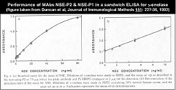 Image thumbnail for Anti-NSE [NSEP1]