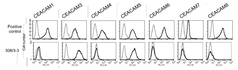 Image thumbnail for Anti-CEACAM3/5 (CD66d/e) [308/3-3] monoclonal antibody