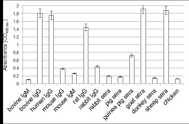 Image thumbnail for Anti- Bovine/Ovine/Goat/Human IgG [42.1] monoclonal antibody