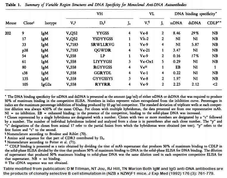 Image thumbnail for Anti-DNA [m202-17] monoclonal antibody