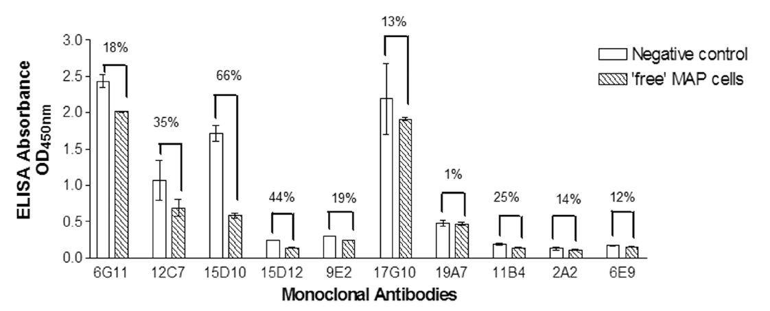 Image thumbnail for Anti-<i>Mycobacterium avium</i> subsp. <i>paratuberculosis</i> [6G11]