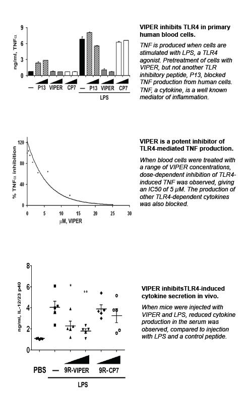 Image thumbnail for VIPER Peptide