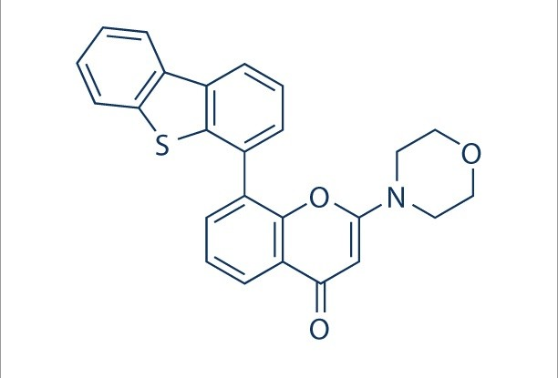 Image thumbnail for DNA-PK inhibitor NU7441 Small Molecule (Tool Compound)