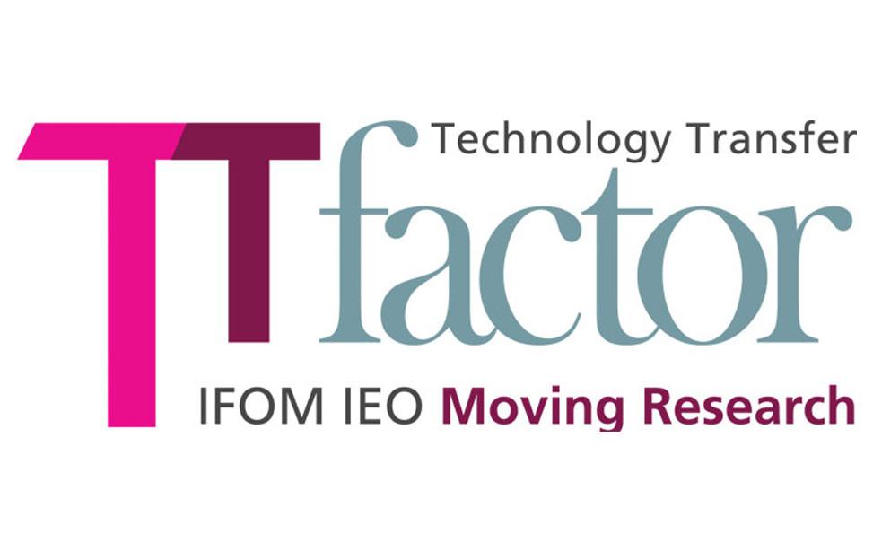 TT Factor