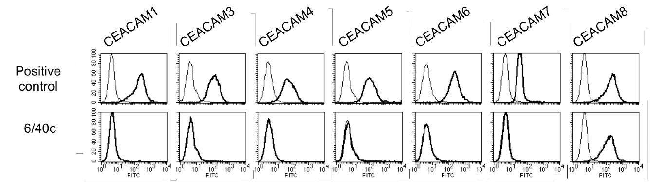 Image thumbnail for Anti-CEACAM8 (CD66b) [6/40c] monoclonal antibody