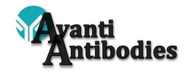Avanti Antibodies