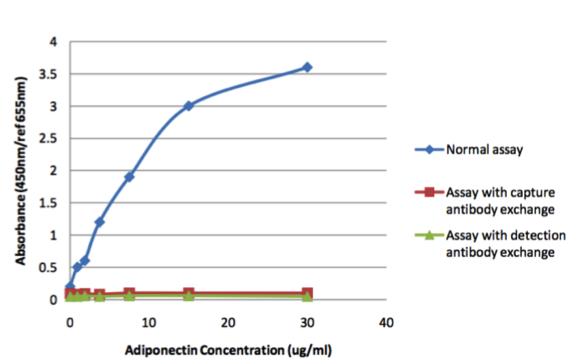 Image thumbnail for Anti-Adiponectin [32F8]