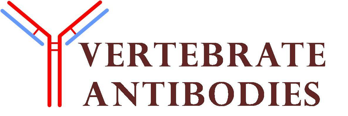 Vertebrate Antibodies Limited