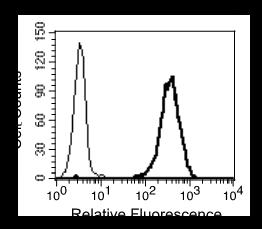 Image thumbnail for Anti-CEACAM1/3/5/6 (CD66a/d/e/c) [D2-4H] monoclonal antibody